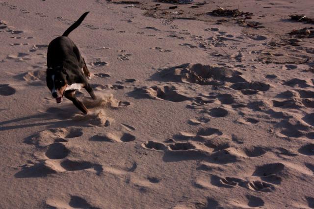 140403-beach outing-017