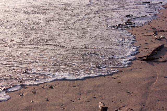 140403-beach outing-025